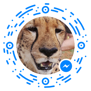 Peter Saydak's Facebook Messenger Code
